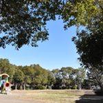 浜之郷公園(周辺)