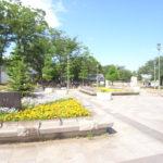 湘南台公園(周辺)